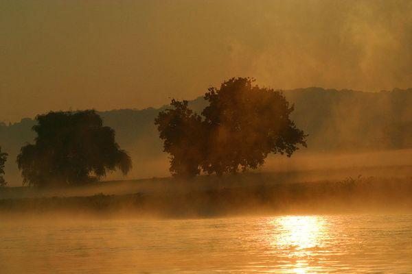 Morgenstund hat Gold an der Elbe