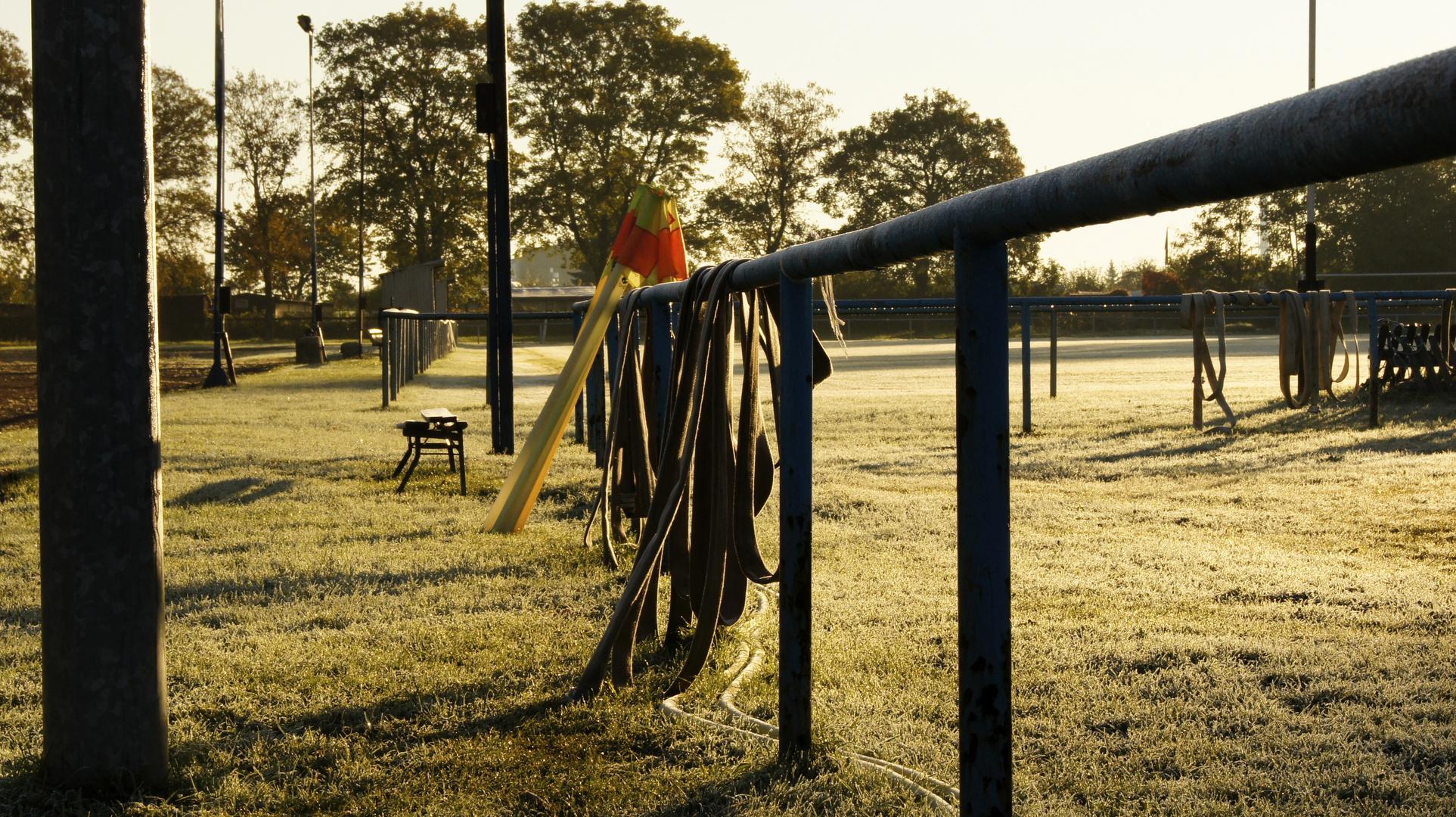 Morgenstund und Reif auf dem Rasen.