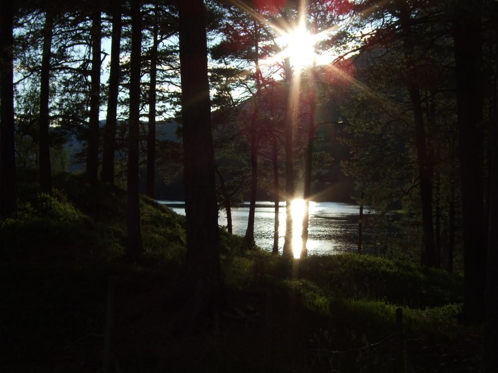 Morgenstunde in Norwegen