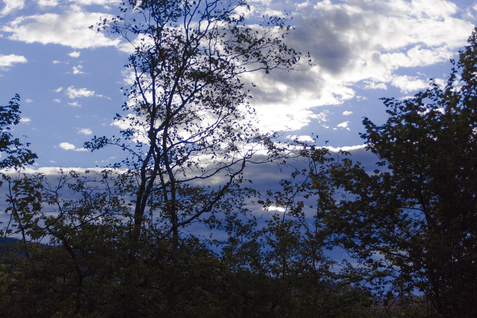 Morgenwolken