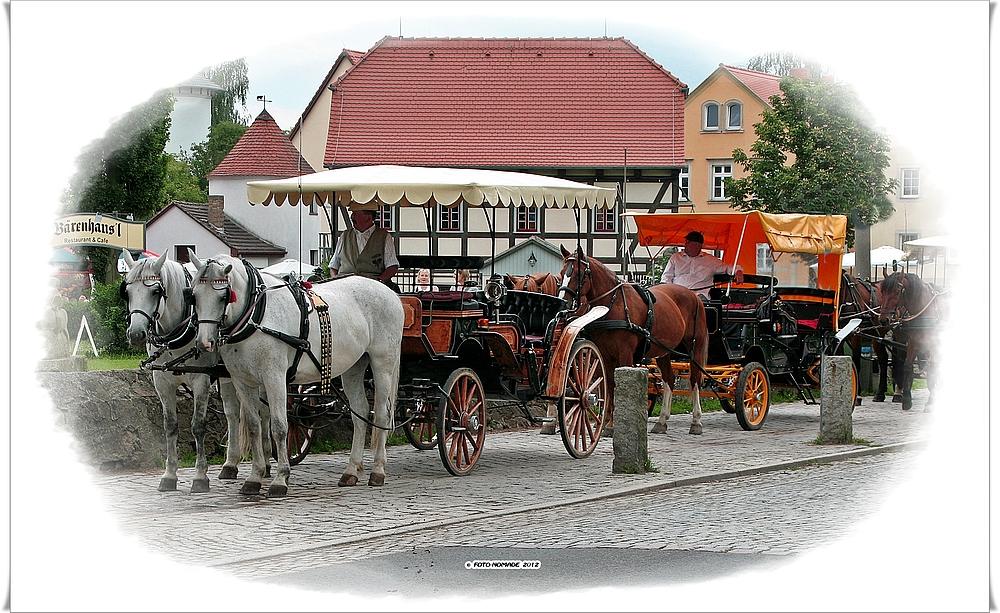 Moritzburg, was sonst .. (5 / 15)