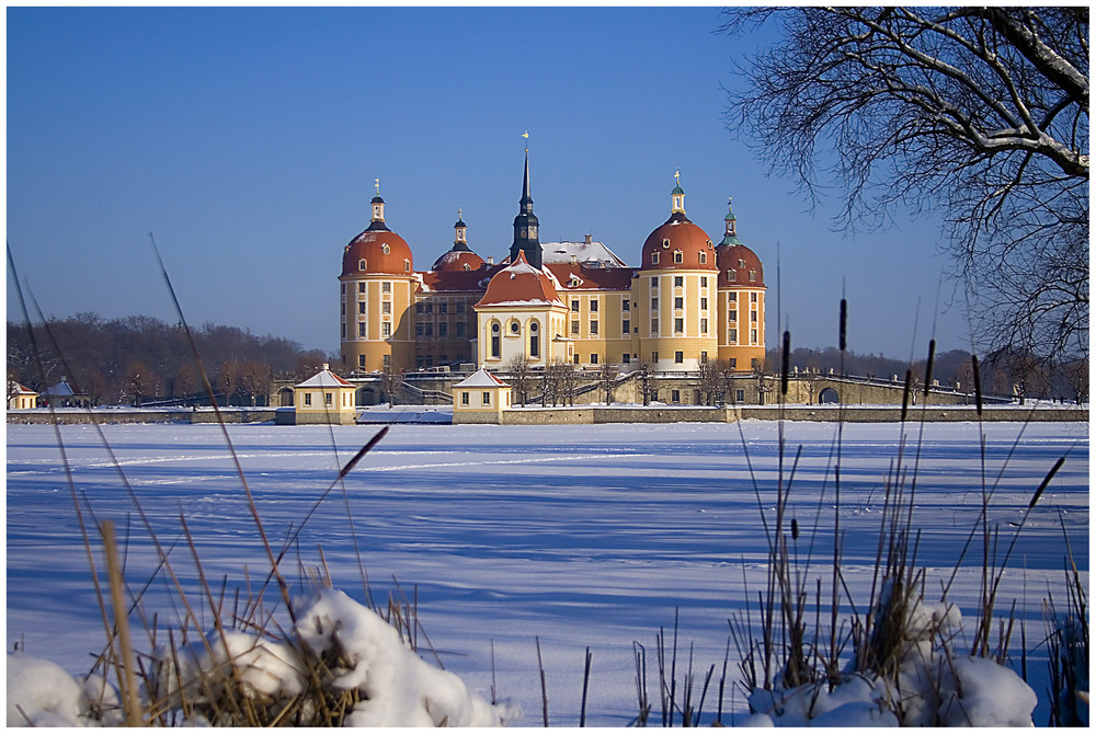 Moritzburg8
