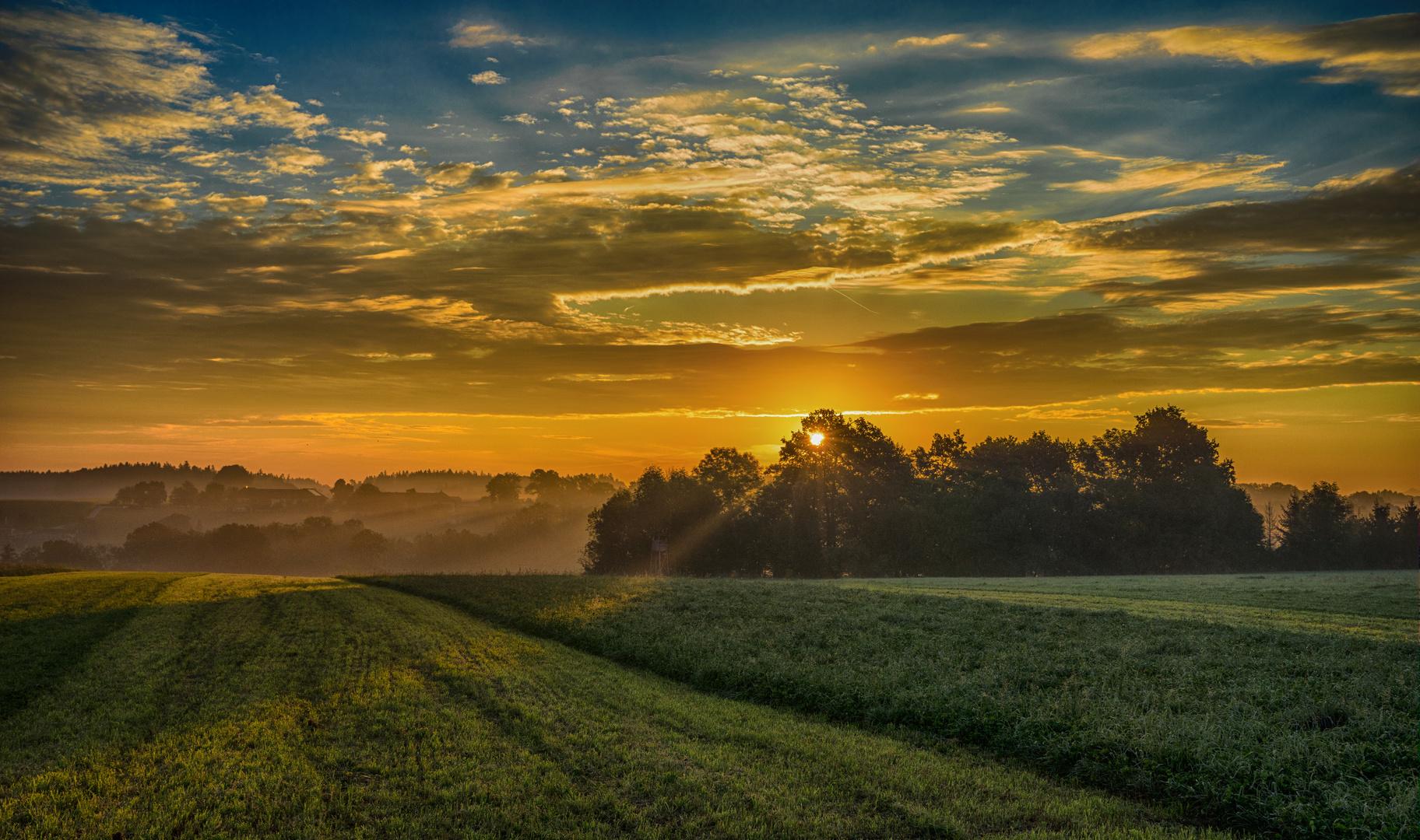 Morning Beam