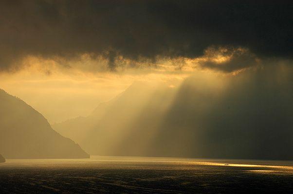 >> morning light <<