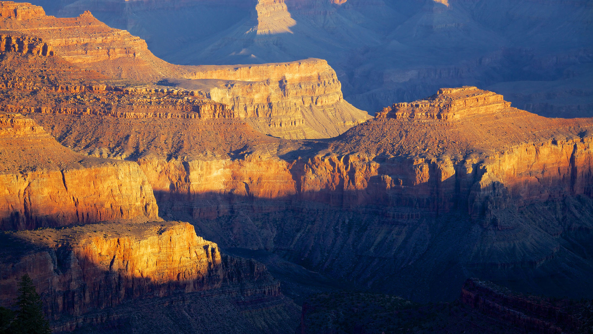Morning light at Grand Canyons South Rim