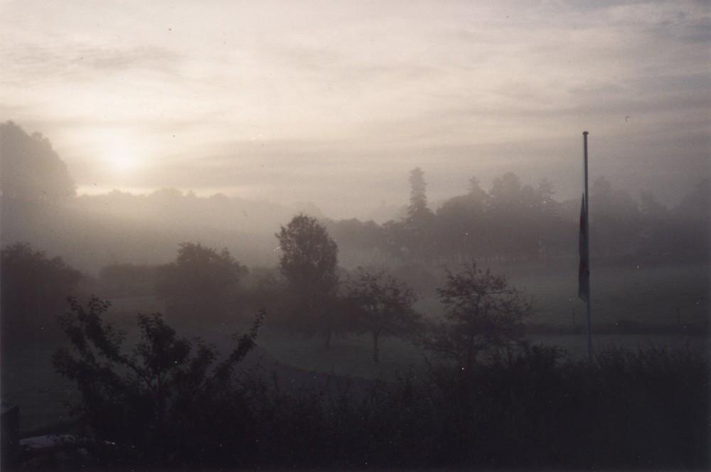 Morning Mist Near Nottingham