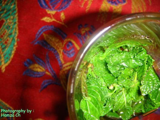 Moroccan Glass of Tea