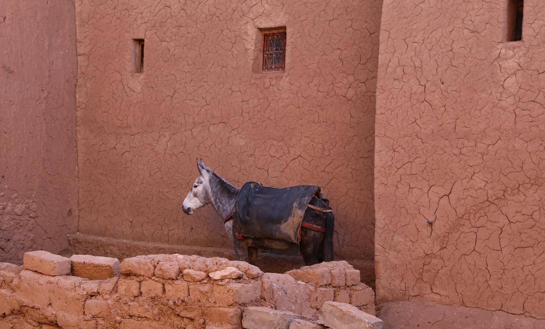 Morocco, Kasbah Ait Ben Haddou