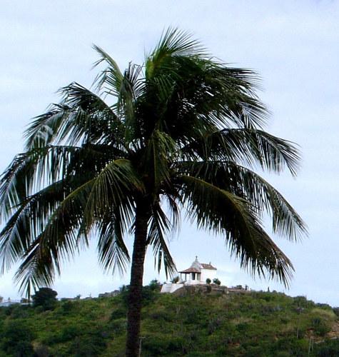 Morro da Guia - Cabo Frio-RJ