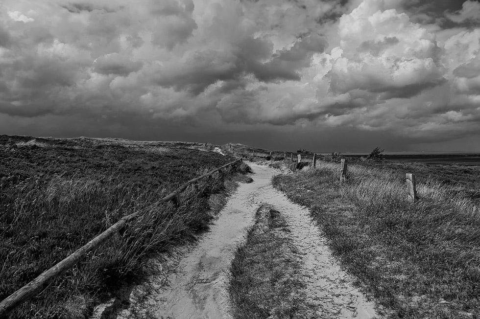 Morsumer Heide