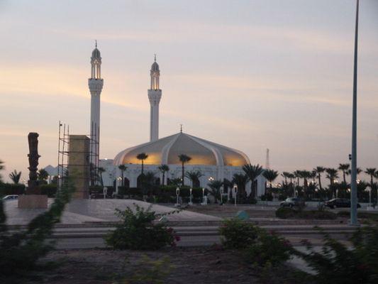 Mosche am Abend