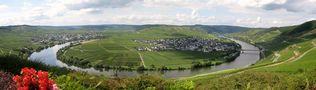 Moselschleife bei Trittenheim von Heidi..H.