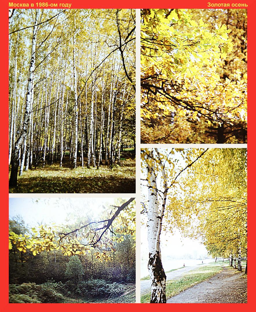 Moskau 1986: Goldener Herbst