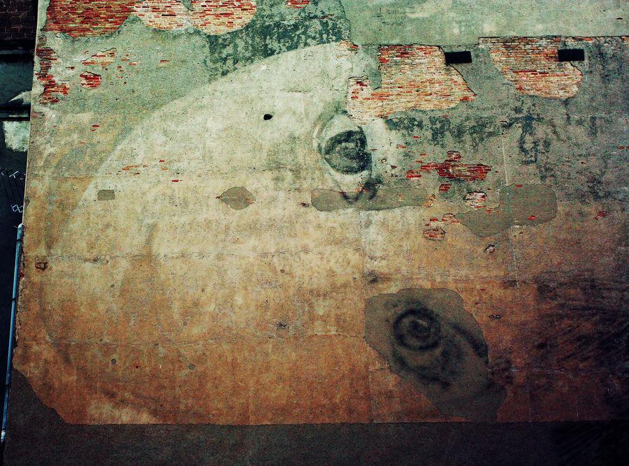 """Mostra collettiva """"Barcellona: In&Out"""" - 20. Il muro che guarda"""
