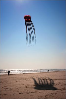 """Mostra collettiva Hegnby Larsen-Farina: """"Via col vento"""" - 3."""
