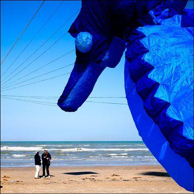 """Mostra collettiva Hegnby Larsen-Farina: """"Via col vento"""" - 4."""