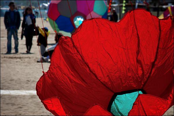 """Mostra collettiva Hegnby Larsen-Farina: """"Via col vento"""" - 5."""