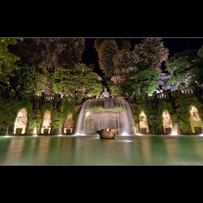 """Mostra collettiva """"Il colore della notte a Villa d'Este"""" - 3."""