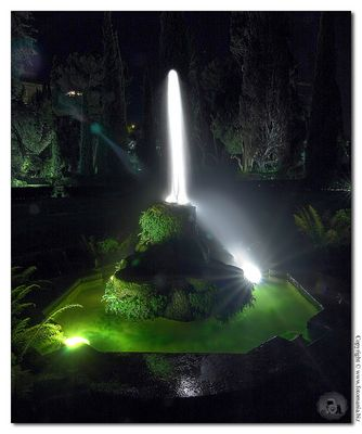 """Mostra collettiva """"Il colore della notte a Villa d'Este"""" - 9."""