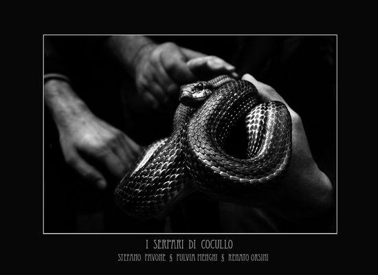 """Mostra collettiva Menghi-Orsini-Pavone """"I serpari di Cocullo"""" - 1."""