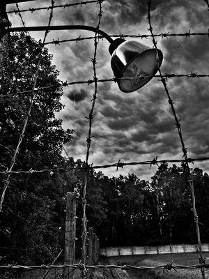 """Mostra online di Alberto Busini """"Il valore della memoria"""" - 4."""