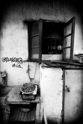 "Mostra online di Aldo Feroce: ""Last Shangai - 10."