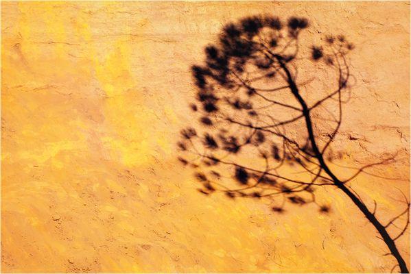 """Mostra online di Alessandro Rovelli """"Polarizzare Roussillon"""" - 8."""