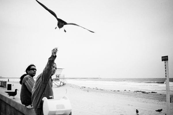 "Mostra online di Alessandro Ruiz ""Dettagli"" - 10. Ocean"