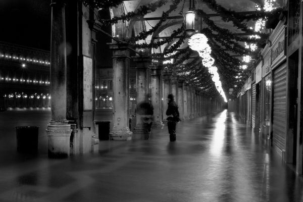 """Mostra online di Alvise Caburlotto: """"Highwater dreams and reality"""" - 6. Cresce ancora"""