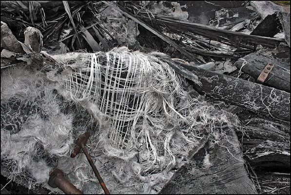 "Mostra online di Biagio Donati ""Burned textures"" - 1."