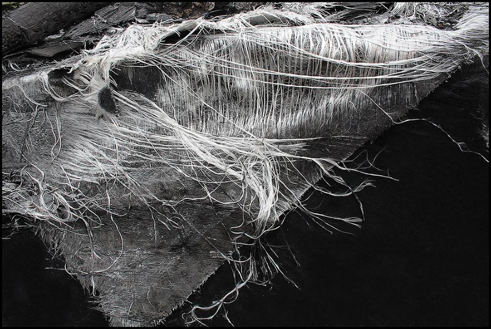 "Mostra online di Biagio Donati ""Burned textures"" - 3."