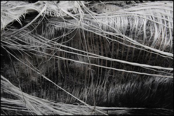 "Mostra online di Biagio Donati ""Burned textures"" - 8."