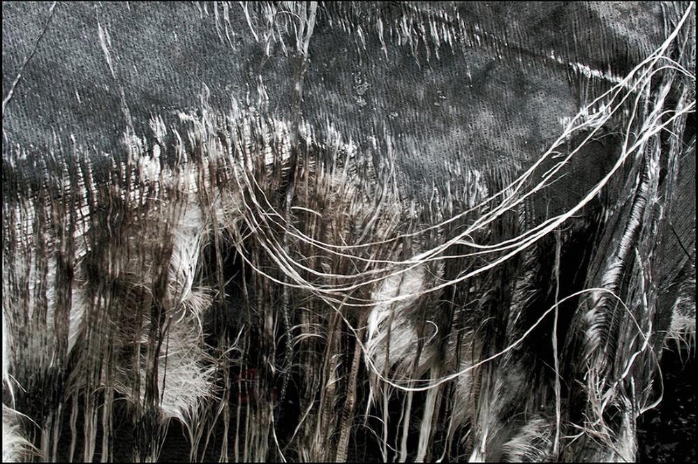 "Mostra online di Biagio Donati ""Burned textures"" - 9."