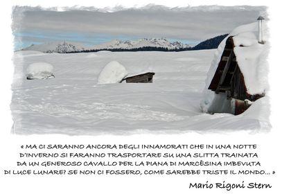 158. Bruno Alberton