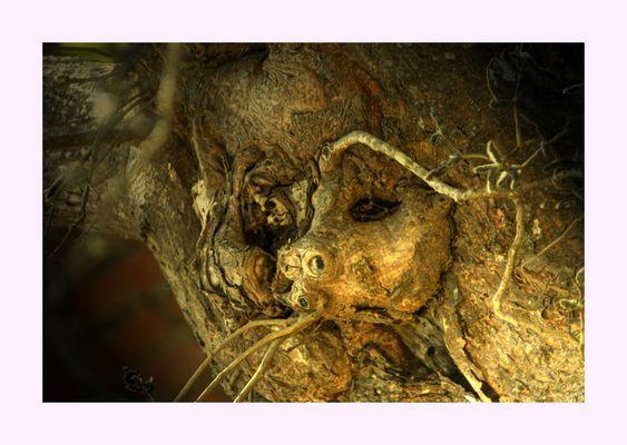 """Mostra online di Bruno Fontana """"Viaggio nella mente"""" - 9. Passato, presente e futuro"""