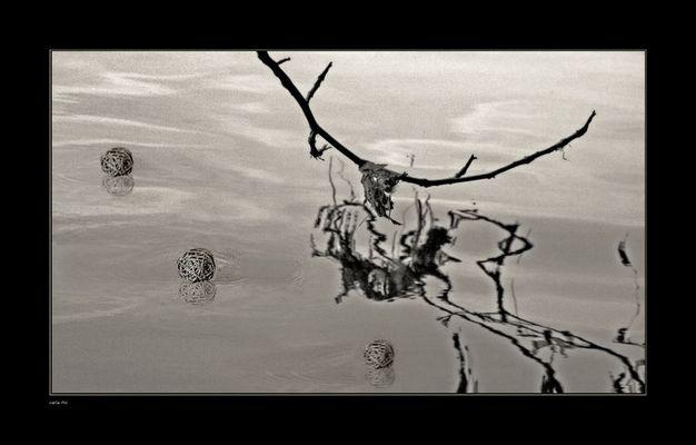 """Mostra online di Carla Rho: """"Pensieri"""" - 3. Pensiero ricorrente"""