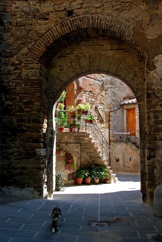 """Mostra online di Enrico Pasini: """"Il castello di Spina"""" - 7. Ingresso, aperto"""