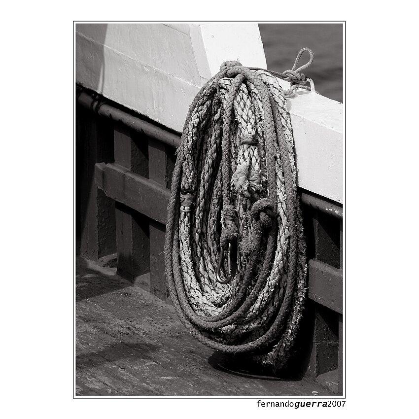 "Mostra online di Fernando Guerra: ""Particolari marittimi"" - 9."