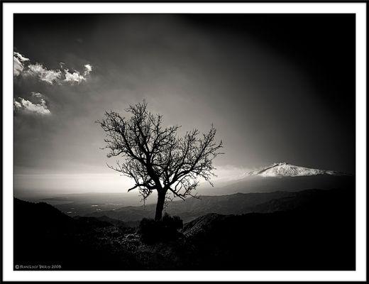 """Mostra online di Francesco Torrisi: """"Etna"""" - 1."""