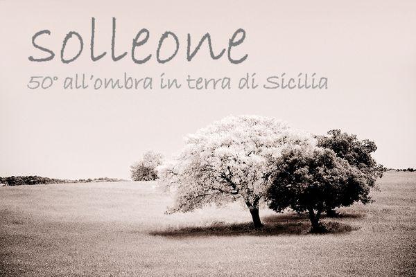 "Mostra online di Francesco Torrisi ""Solleone"""