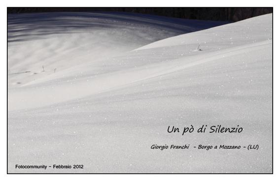 """Mostra online di Giorgio Franchi """"Un po' di silenzio"""""""