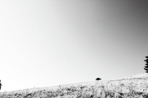 """Mostra online di Giorgio Franchi """"Un po' di silenzio"""" - 5."""