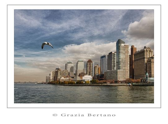 "Mostra online di Grazia Bertano ""Autumn in New York"" - 1. Flight from New York"