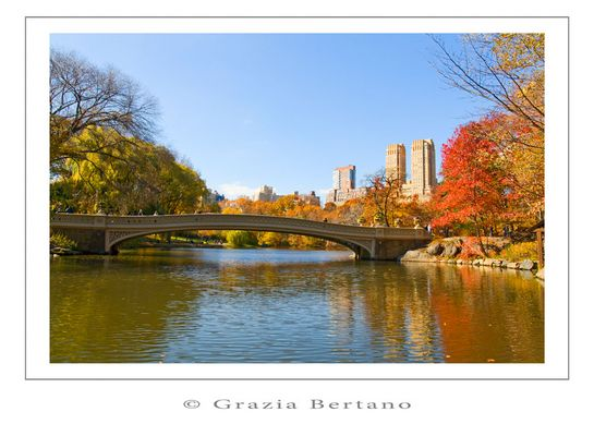 "Mostra online di Grazia Bertano ""Autumn in New York"" - 3. Indian summer in Central Park"