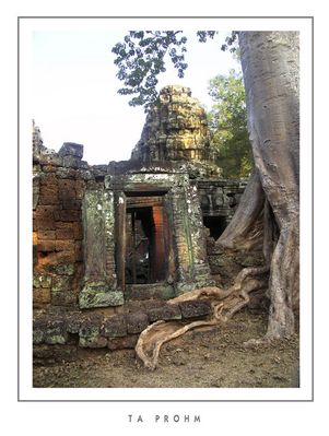 """Mostra online di Grazia Bertano: """"Non solo Khmer"""" - 3. Ta Phrom"""
