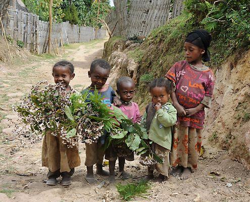"""Mostra online di Heinz Homatsch """"Etiopia... mio futuro"""" - 10. Arrivederci!"""