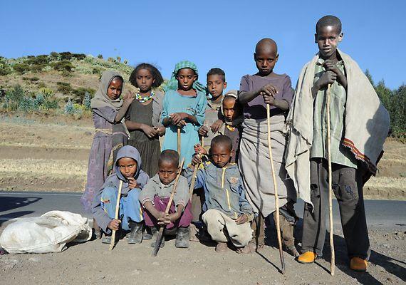 "Mostra online di Heinz Homatsch ""Etiopia... mio futuro"" - 5. Dopo lavoro"