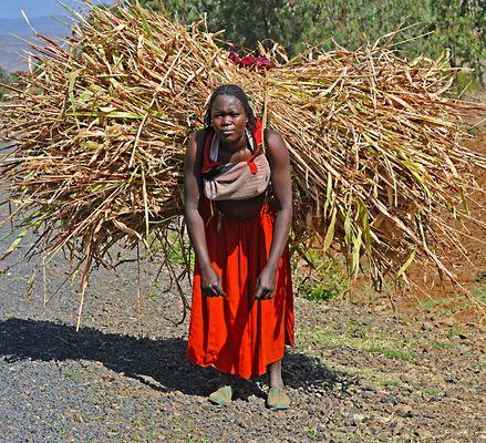 """Mostra online di Heinz Homatsch """"Etiopia... mio futuro"""" - 6. Che fatica!"""
