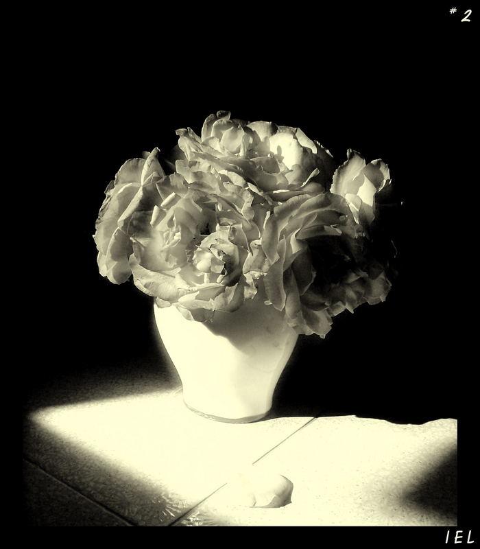 "Mostra online di Irene Ester Leo - ""Essence de Rose"" - 2."
