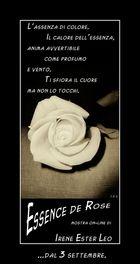 "Mostra online di Irene Ester Leo - ""Essence de Rose"" -"